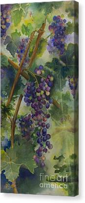 Cabernet Canvas Print - Baby Cabernets II   Triptych by Maria Hunt