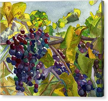Canvas Print featuring the painting Grapevines by Lynne Reichhart