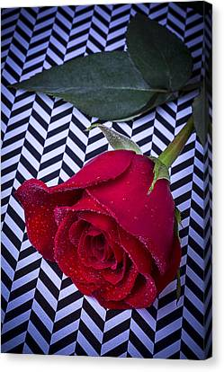 Graphic Rose Canvas Print by Garry Gay