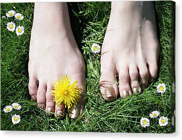 Grass Between My Toes Canvas Print by Stephen Norris