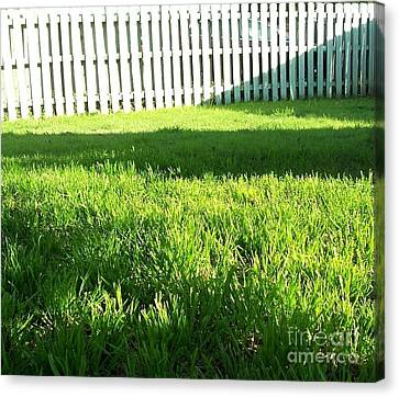 Grass Shadows Canvas Print