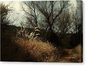 Canvas Print featuring the photograph Grasses Of Winter by Karen Slagle