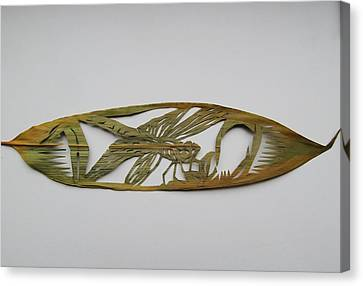 Grasshopper On Bamboo Leaf Canvas Print by Alfred Ng