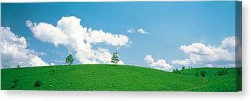 Aesthetic Landscape Image Canvas Print - Grassland With Blue Sky And Clouds by Panoramic Images