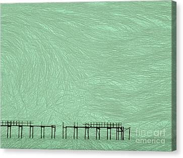 Grassy Flats Canvas Print