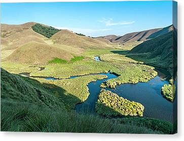Grassy Hills And Wetlands Canvas Print