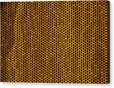 Grate Canvas Print by Mark Weaver