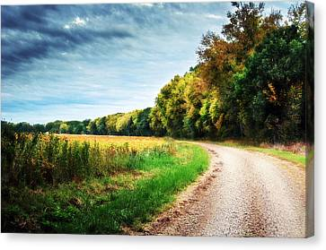 Gravel Curve In The Fall Canvas Print by Eric Benjamin