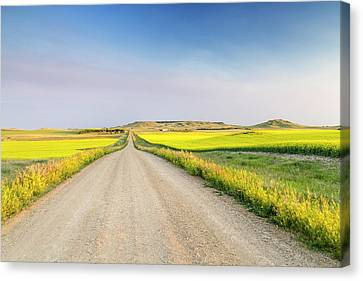 Gravel Road To West Rainy Butte Canvas Print by Chuck Haney