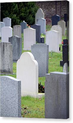 Graveyard Canvas Print by Public Health England