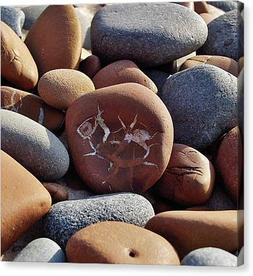 Gray And Brown Stones Canvas Print by Kathi Mirto