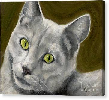 Gray Cat With Green Eyes Canvas Print by Amy Reges