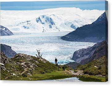 Gray Glacier Canvas Print by Peter J. Raymond