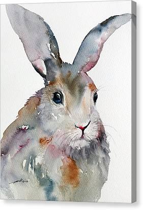 Gray Hare Canvas Print