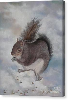 Gray Squirrel Canvas Print by Jackie Hill