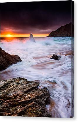 Gray Whale Cove Canvas Print by Alexis Birkill