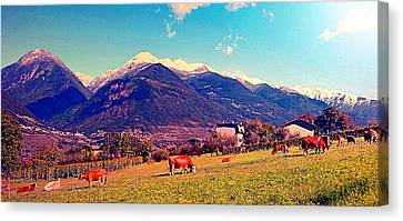 Grazing Cows 2 Canvas Print by Giuseppe Epifani