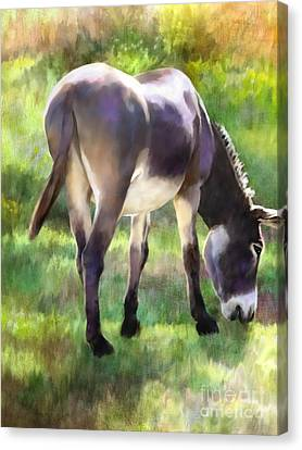 Grazing Canvas Print by Ursula Freer