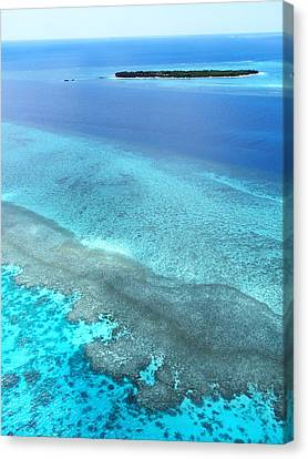 Great Barrier Reef - Flying To Paradise Canvas Print