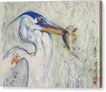 Great Blue Heron And Fish Canvas Print by Alejandro  Angio