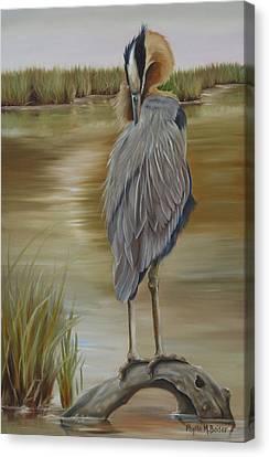 Great Blue Heron At Half Moon Island Canvas Print by Phyllis Beiser