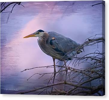 Great Blue Heron Fishing Canvas Print by J Larry Walker