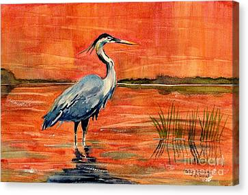 Great Blue Heron In Marsh Canvas Print by Melly Terpening