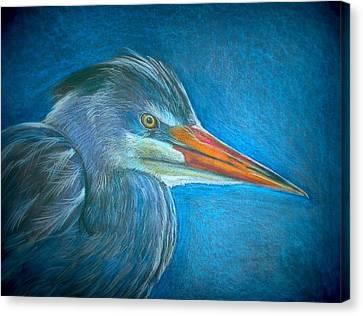 Great Blue Heron Canvas Print by Linda Nielsen