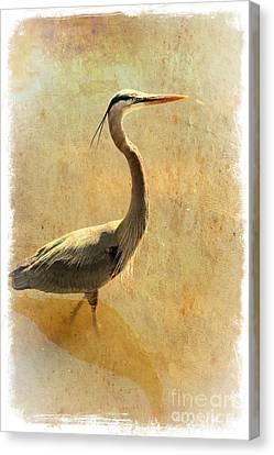 Digital Touch Canvas Print - Great Blue Heron Mystique by Carol Groenen