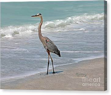 Canvas Print featuring the photograph Great Blue Heron On Beach by Mariarosa Rockefeller