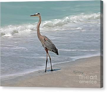 Great Blue Heron On Beach Canvas Print by Mariarosa Rockefeller