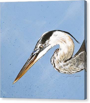 Great Blue IIi Canvas Print by Joan Garcia