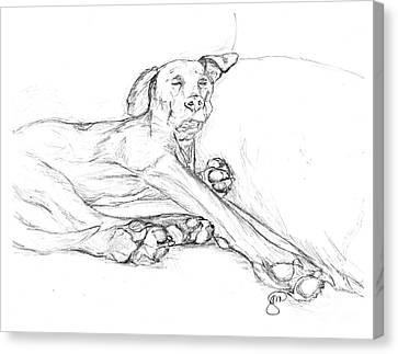 Great Dane Dog Sketch Bella Canvas Print