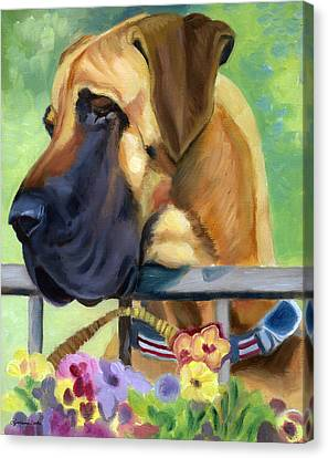 Great Dane On Balcony Canvas Print by Lyn Cook
