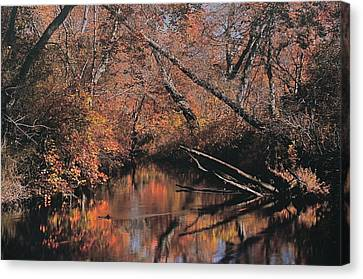 Great Egg Harbor River Canvas Print