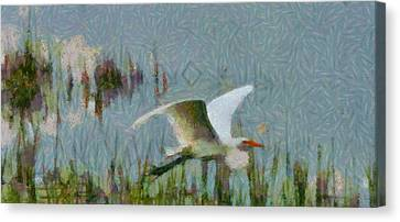 Great Egret Painting Canvas Print by Dan Sproul