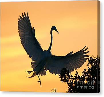 Canvas Print featuring the photograph  Sunset Ballet by John F Tsumas