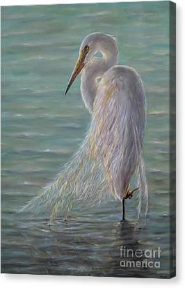 Great Egret Canvas Print by Yelena Koehn
