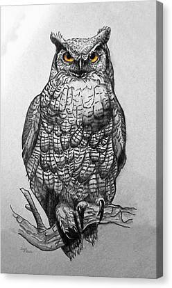 Great Horned Owl Black And White Canvas Print by Sandi OReilly