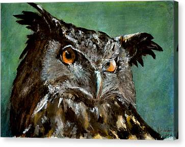 Great Horned Owl Canvas Print by Carlo Ghirardelli