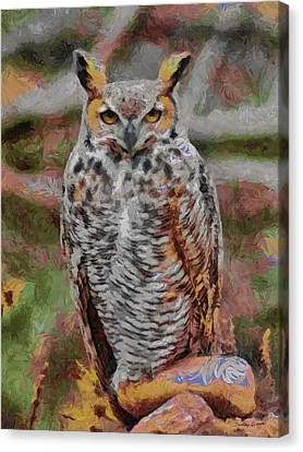 Fountain Creek Nature Center Canvas Print - Great Horned Owl Fun 2 by Ernie Echols