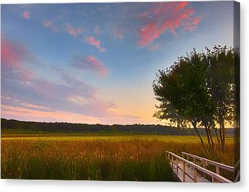 Great Meadows Late Summer Setting Canvas Print by Sylvia J Zarco