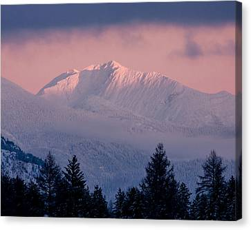 Canvas Print featuring the photograph Great Northern by Jack Bell