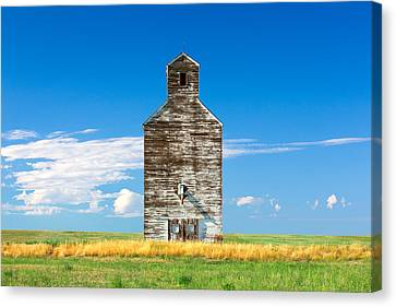 Great Plains Sentinel Canvas Print by Todd Klassy