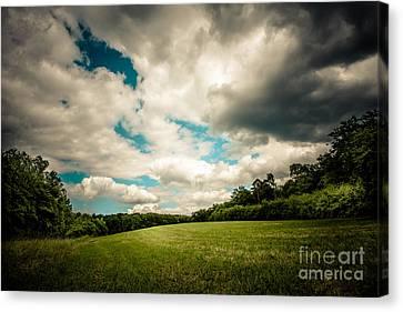 Great Skies Canvas Print by Hannes Cmarits
