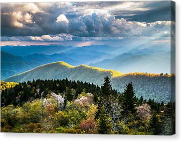 Great Smoky Mountains National Park - The Ridge Canvas Print by Dave Allen