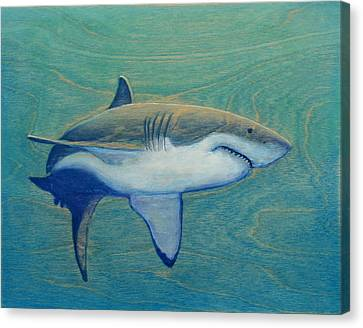 Great White Canvas Print by Nathan Ledyard