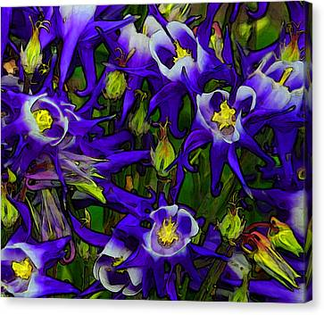 Green And Purple Burst Abstract Canvas Print by James Hammen