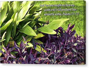 Green And Purple Foliage Ps. 71v17 Canvas Print by Linda Phelps