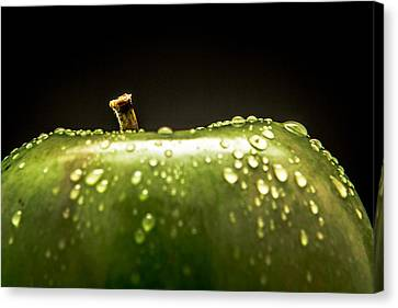 Green Apple Canvas Print by Wade Brooks